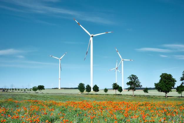 Moderne windkraftanlagen im blumenfeld mit roter mohnblume und blauen kornblumen