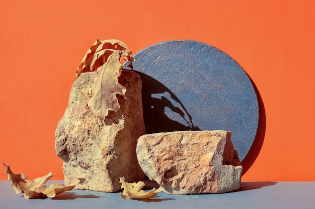 Modernes herbstziegelpodest in orange und grau mit natürlichem saisonalem herbstdekor