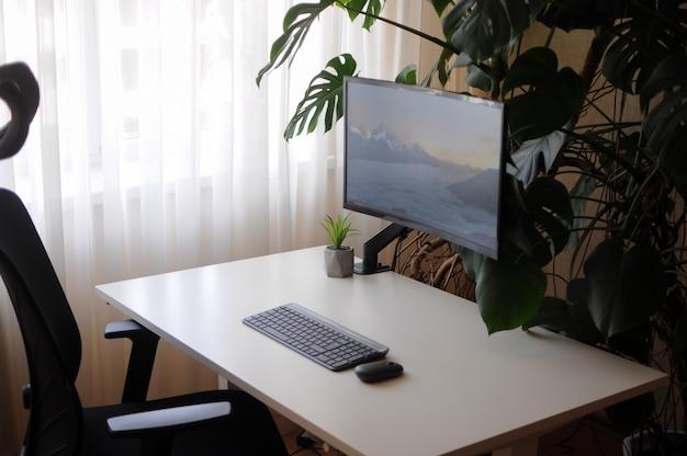 Modernes home office mit gebogenem bildschirm und orthopädischem stuhl. interieur mit pflanzen