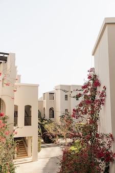 Modernes orientalisches gebäude mit beigefarbenen wänden, roten blumenpflanzen und malerischer aussicht.