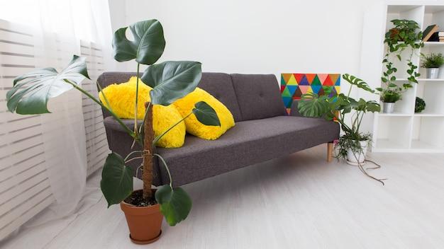 Modernes studio-apartment mit lebenden pflanzen. helle farben im innenraum.