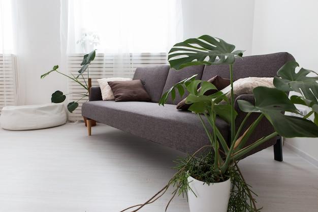 Modernes studio-apartment mit lebenden pflanzen. innen grau. sofa im wohnzimmer.