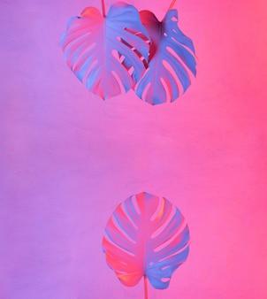 Modischer minimaler hintergrund mit neonbeleuchteten tropischen monsterblättern und kopienraum
