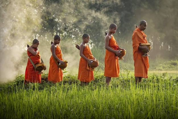 Mönchs-almosen sind die aktivitäten von mönchen, die im buddhismus zu tun haben. 20.09.2020