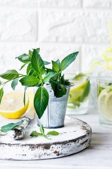 Mojito-cocktail in glas, zitronen und minzblättern