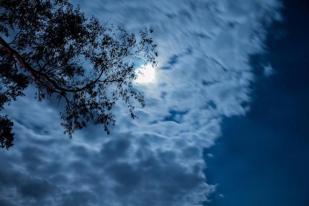 Mondlicht.