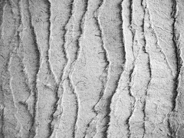 Monochrom zerrissenes papier mit pergament