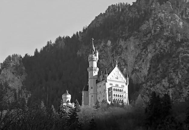 Monochromes bild von schloss neuschwanstein auf dem hügel in der nähe von füssen, bayern, deutschland