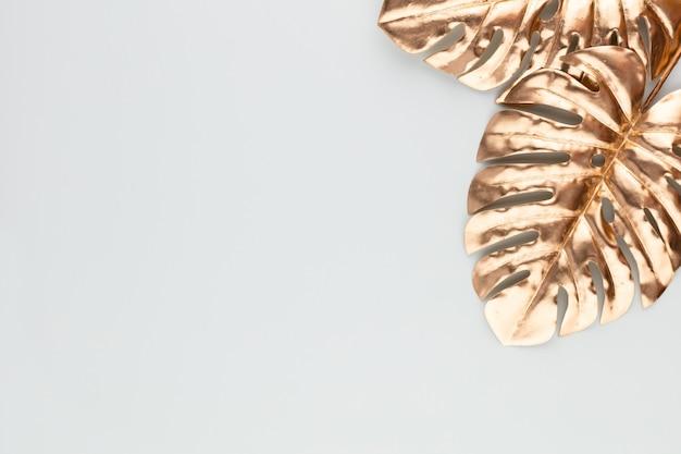 Monstera blattgold auf blauem hintergrund. palmblatt, flachlage und draufsicht.