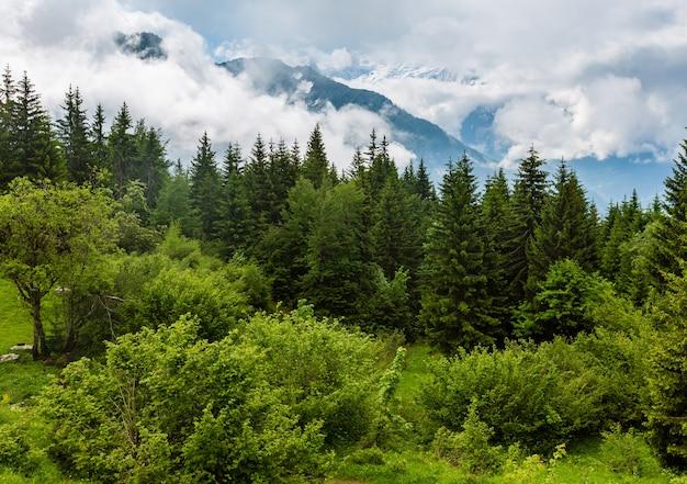 Mont-blanc-bergmassiv (chamonix-tal, frankreich, blick vom stadtrand plaine joux).