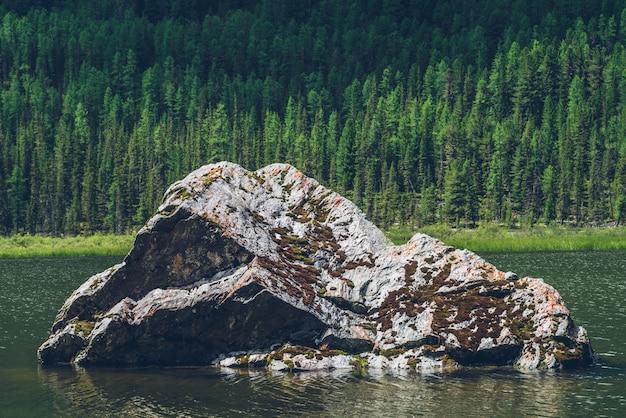 Moosiger stein im bergsee.