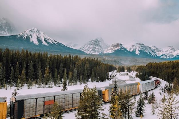 Morants kurvenbahn und zug mit kanadischem roakie-gebirgshintergrund