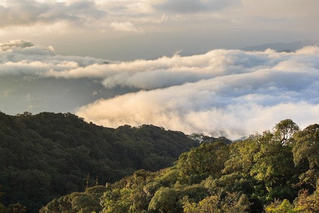 Morgen-ansicht des inthanon berges, chiang mai, thailand