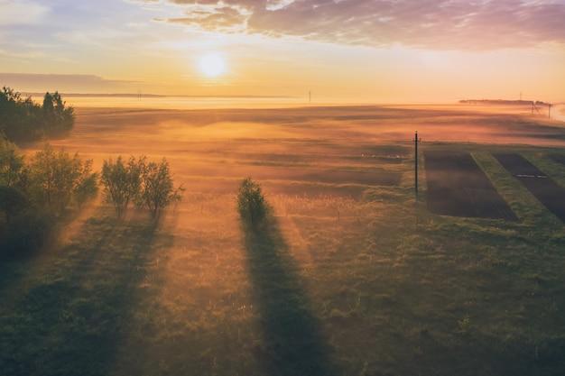 Morgendämmerung mit nebel auf den feldern