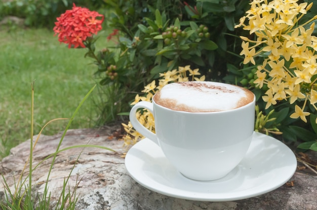 Morgenkaffee mit sonnenlicht.