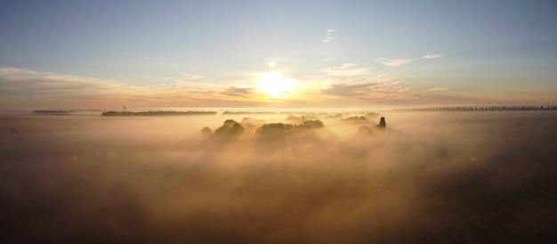 Morgennebel, sonnenstrahlen und lange schatten im nebel, der sich zwischen den bäumen im tal in der nähe des dorfes erstreckte.
