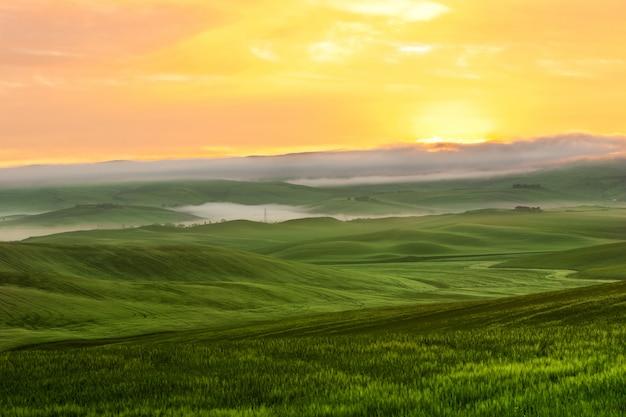 Morgennebelansicht über ackerland in toskana, italien