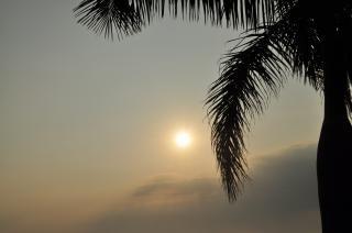 Morgensonne, tropische
