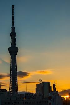Morgensonnenaufgang mit schattenbild von tokyo-skytree, mittelstadtblick von asakusa, tokyo, japan
