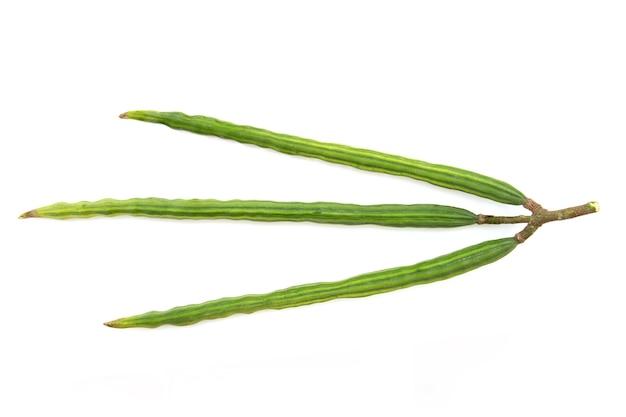 Moringa früchte lokalisiert auf weißem hintergrund mit beschneidungspfad. draufsicht, flache lage.