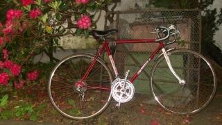 Morrison 10-gang fahrrad, rot