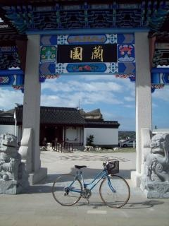 Morrison autobahn ten speed - blau damen, chinesisch