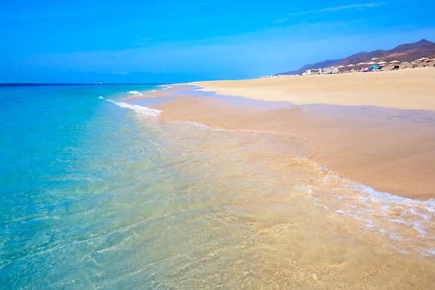 Morro jable matorral strand jandia in fuerteventura
