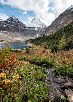 Mount assiniboine mit lake magog in der herbstwildnis
