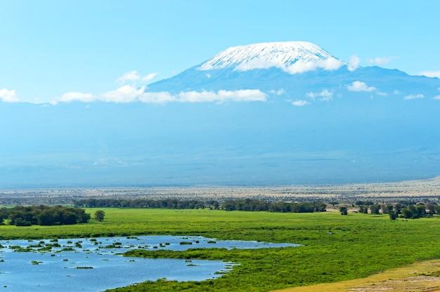 Mount kilimanjaro in der afrikanischen savanne in kenia