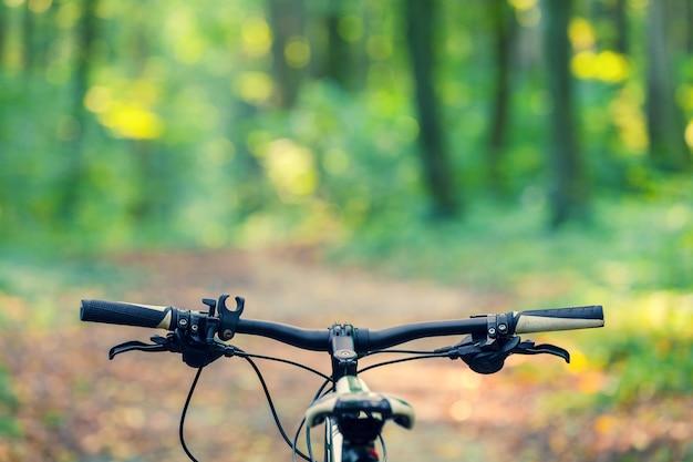 Mountainbiken bergab schnell mit dem fahrrad absteigend.