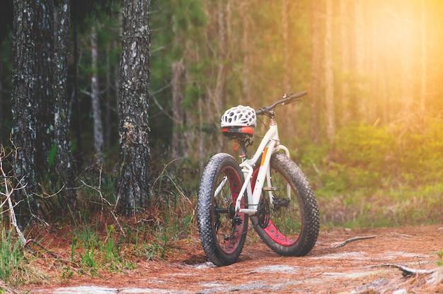 Mountainbikes und weiße sturzhelme mit kieferwaldhintergrund.