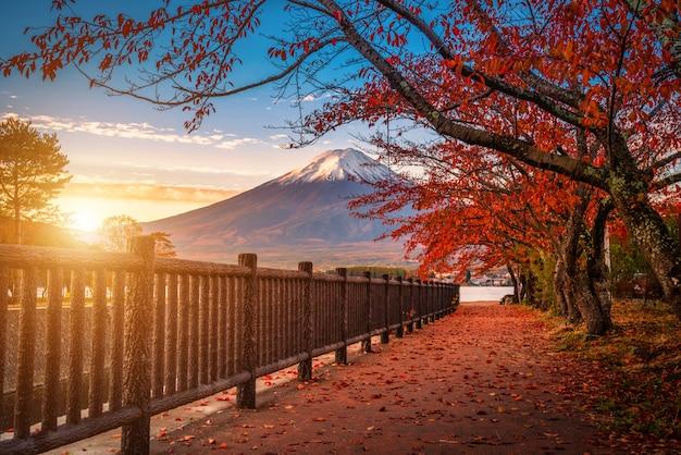 Mt. fuji über see kawaguchiko mit herbstlaub bei sonnenaufgang in fujikawaguchiko, japan.