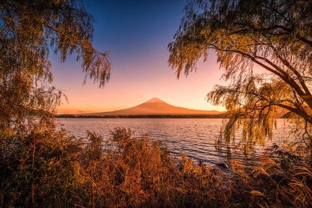 Mt. fuji über see kawaguchiko mit herbstlaub bei sonnenuntergang in fujikawaguchiko, japan.