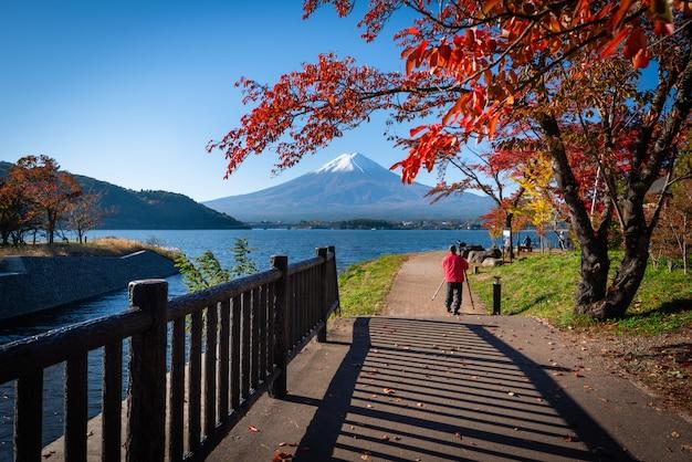 Mt. fuji über see kawaguchiko mit herbstlaub tagsüber in fujikawaguchiko, japan.