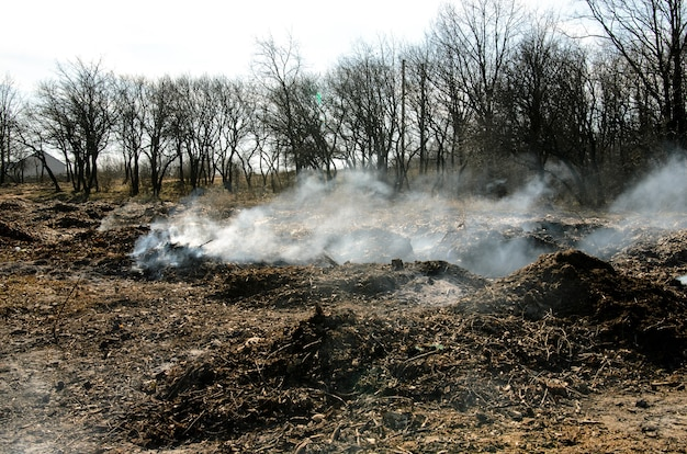 Müllverschmutzung der umwelt.