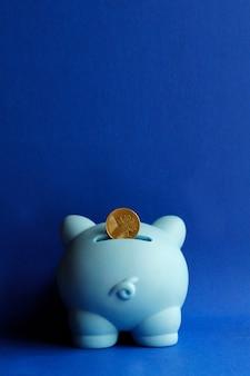 Münze im sparschwein