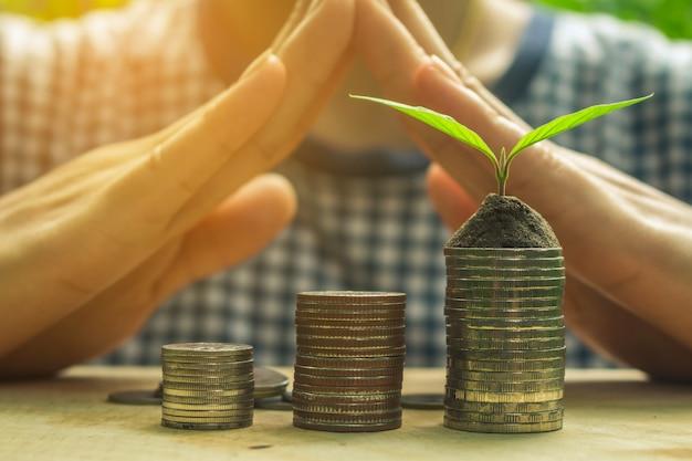 Münze und grüne wachsende anlage auf altem hölzernem baumhintergrund.