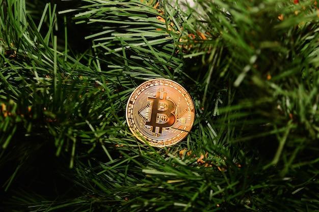 Münzenbitcoin auf dem baum des neuen jahres