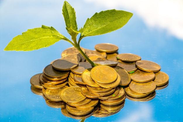 Münzengeldwährung auf einander in den verschiedenen positionen, geldkonzept.
