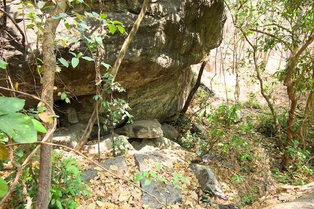 Mund eines frühlings, natürlicher brunnen vom großen stein im wald am nationalpark op luang