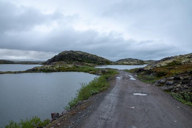 Murmansk, algen geworfene brandung, ufer des arktischen ozeans, halbinsel sredniy
