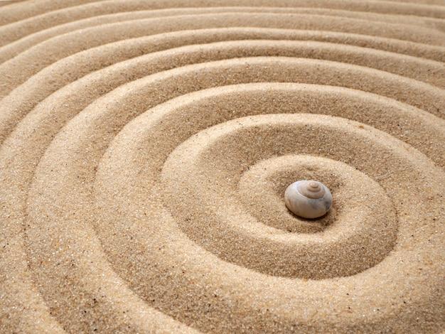 Muschel auf dem sand in form einer spirale