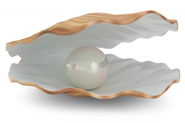 Muschel mit perle innen. natürliche offene perlenschale. 3d-illustration