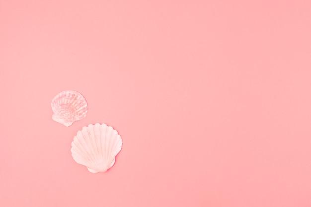 Muschel mit zwei muscheln auf rosa hintergrund