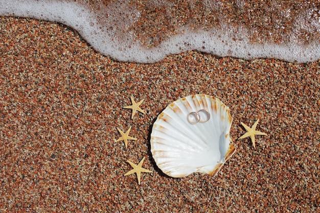 Muschel und seestern mit eheringen am strand