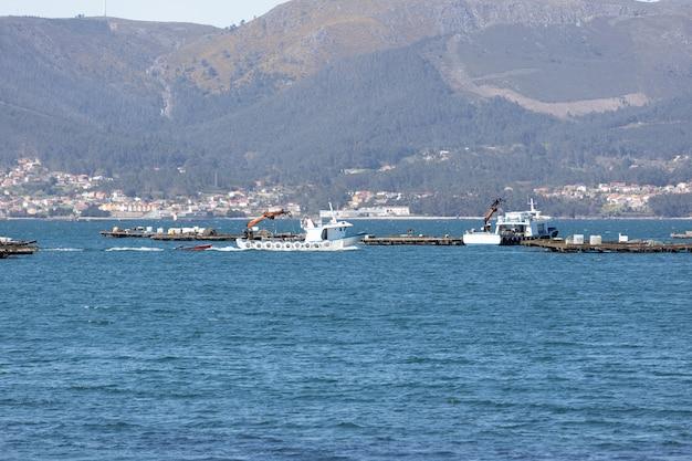 Muschelboot segeln zwischen muschelholzplattform genannt batea