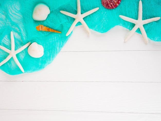 Muscheln auf einem blauen gitter, hintergrund