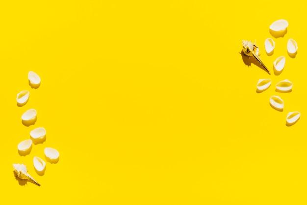 Muscheln auf hellem hintergrund