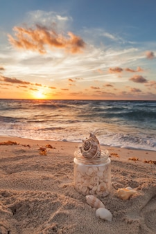 Muscheln gesammelt in einem grasgefäß auf tropischem sandy beach mit sonnenaufgang über ozean