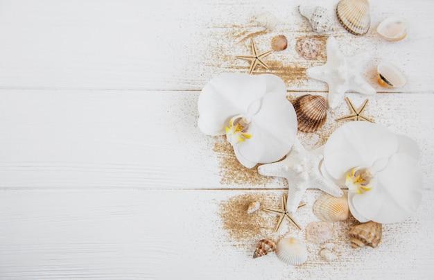 Muscheln mit sand und orchideenblüten